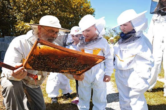 Zážitková návšteva včelej farmy s možnosťou výroby medových mydielok, ozdôb alebo sviečok z vosku