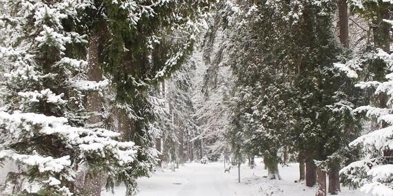 Zimné pobyty s polpenziou v Rajeckých Tepliciach v známom hoteli Skalka***/Rajecké Teplice
